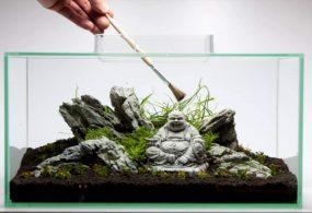 2 cách xếp đá Iwagumi cho hồ nano